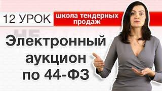 44-ФЗ ДЛЯ НАЧИНАЮЩИХ! Электронный аукцион по ФЗ-44? Что это такое и как учавствовать? [Незапилено]