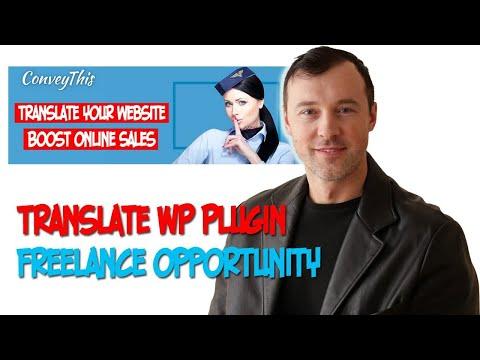 WordPress Plugin Localization - Freelance Job Opportunity