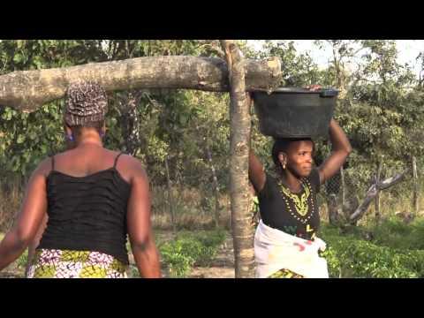 2016 Gambia Skolfilmen Rev E