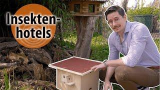Wie leben Insekten? dobar-smart: Insektenhotels | Unterschiedliche Nisthilfen
