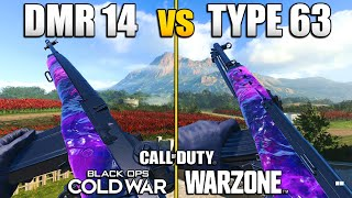 Which Overpowered Gun is Better in Warzone? DMR 14 vs Type 63 | CW Comparing Stats & Class Setups