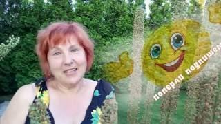 ЭРЕМУРУС - НЕПРЕВЗОЙДЕННОЕ ЧУДО В САДУ - многолетние садовые цветы