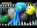 Epic Shredding: Octopus  Squishy &  Slime What's Inside Slime  Family Toys