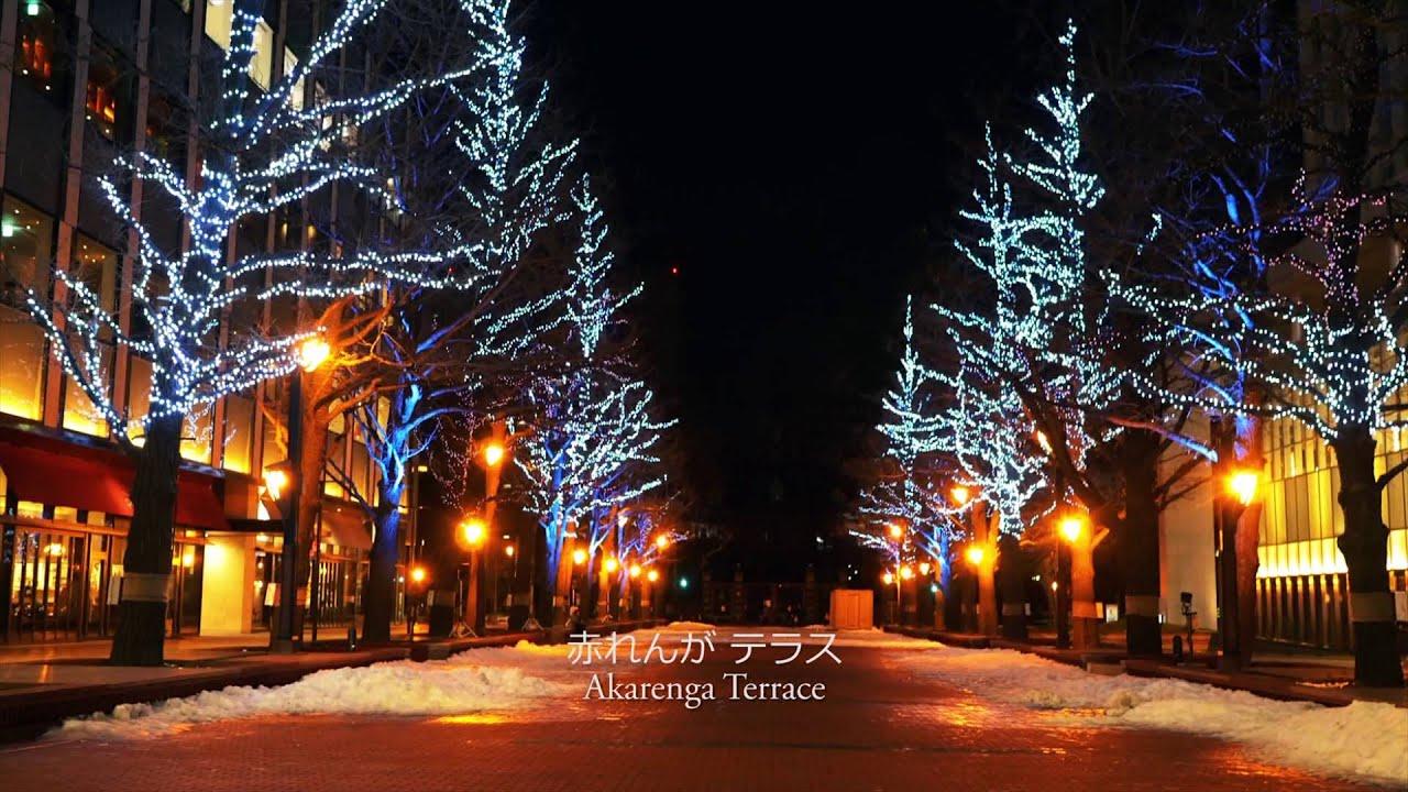 Long Christmas Lights