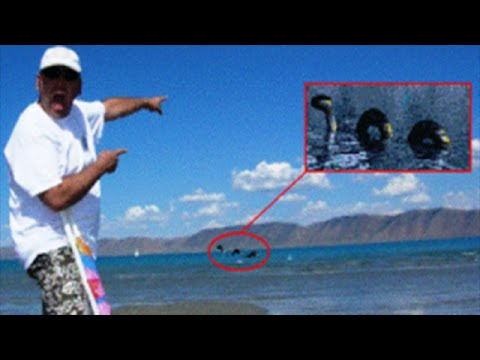 Mysterious lake creature discovered in idaho monster info 1 8 youtube mysterious lake creature discovered in idaho monster info 1 8 freerunsca Gallery
