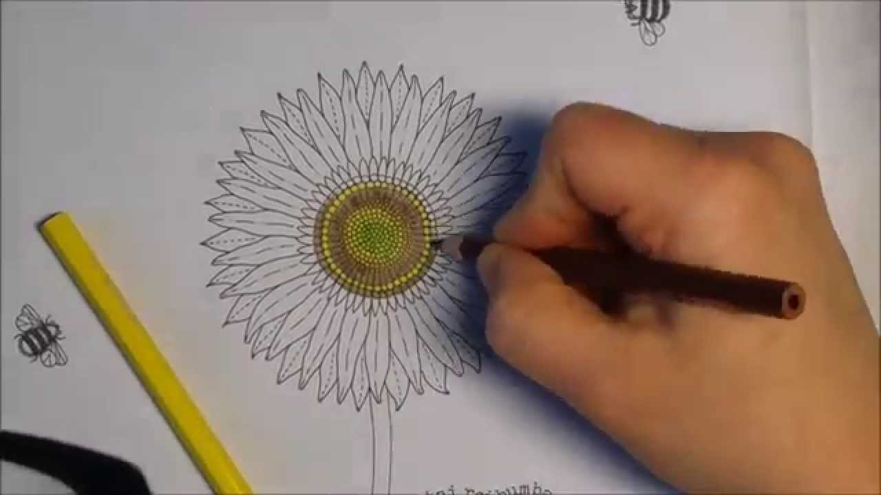 How to) Coloring a sunflower, Secret Garden - Creative Coloring ...