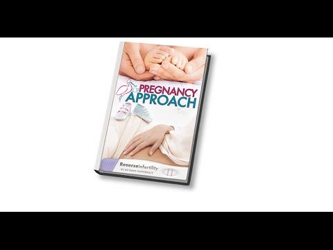 pregnancy-approach-book-by-lauren-lee