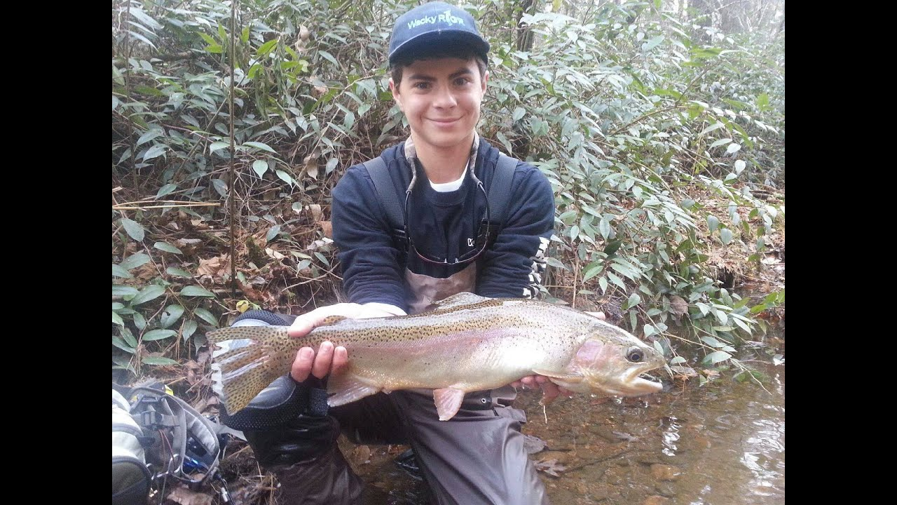 North georgia fall fly fishing for big trout browns for Fly fishing north georgia