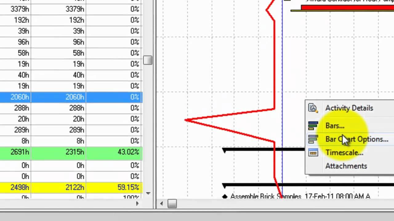 primavera p6 8 2 progress line mp4