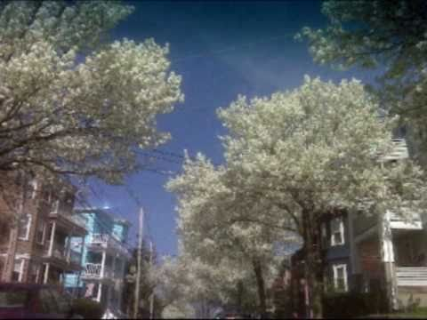 Somerville, Massachusetts (parody)