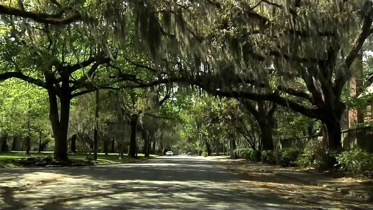 Ardsley Park Neighborhood Savannah GA