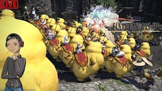 Final Fantasy XIV Ft.Members🔴....Ummm I Think We Over Fed Our Chocobos🐤