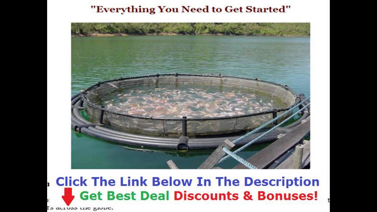 tilapia farming in china 50 off discount link youtube rh youtube com tilapia farming guide book tilapia farming guide philippines