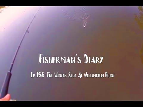 Ep 156: Long Hard Times Fishing At Wellington Point ~ Fisherman's Diary
