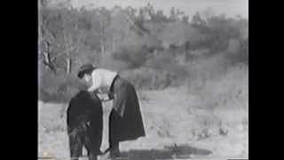THE BRAVE HUNTER (1912) -- Biograph, Mack Sennett, Mabel Normand, Dell Henderson
