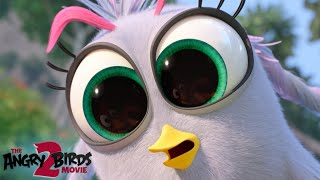 Angry Birds Movie 2 | Meet The New Birds And Pigs: Silver