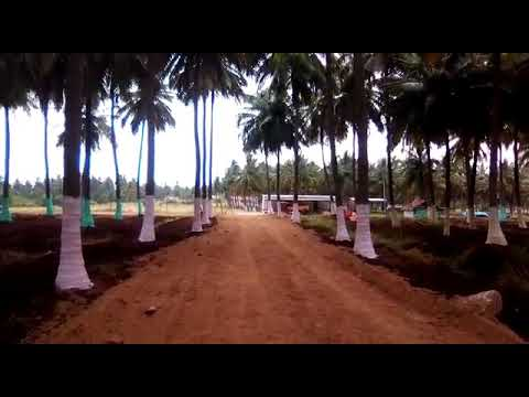 Farm house in coimbatore with fully natural life