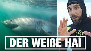 Der weiße Hai - Jaworskyj Fotografie Doku