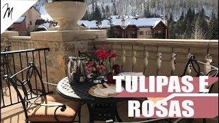 Tulipas e Rosas - Marcelle Braga Viaja em Vail