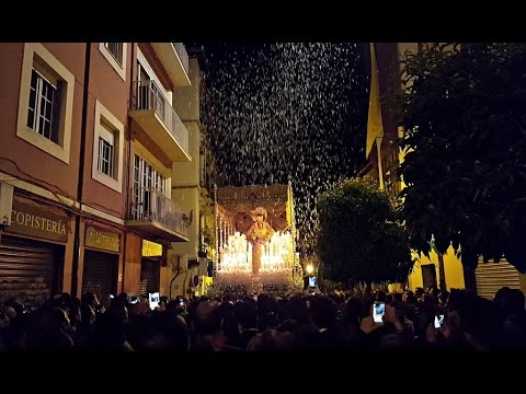 Petalada Maria Santisima De La Misericordia Extraordinaria Granada 2016