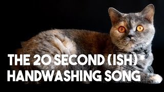 The 20 Second (Ish) Hand Washing Song : Pandemic Edition
