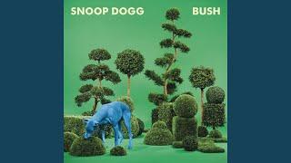 Play I'm Ya Dogg