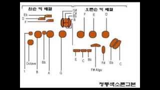 정통색소폰 기본 기초운지법 (1개월 완성)