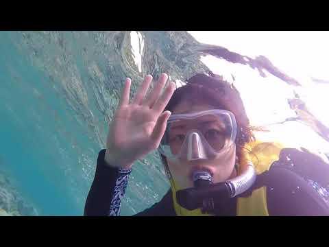 Honeymoon in Palau 2018