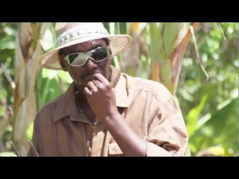 I Love The Bahamas Promo - Muddoe Music / Junkanoo Music by Bigetty