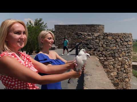 Араратская долина | Вокруг света