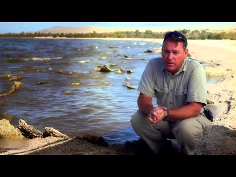 UCI Salton Sea Initiative: Light on the Water