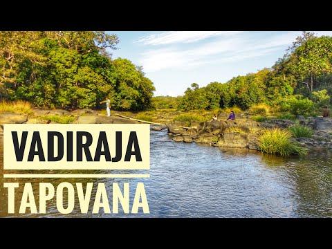 Sri Vadiraja Theertha | Tapovana | Sonda Kshetra