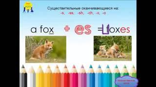Английская грамматика для детей. Множественное число