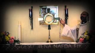 Il-Kurunella tal-Hniena Divina kantata minn Fr Hayden