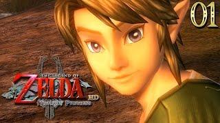 Zelda Twilight Princess HD #01 : RETOUR AU CRÉPUSCULE !