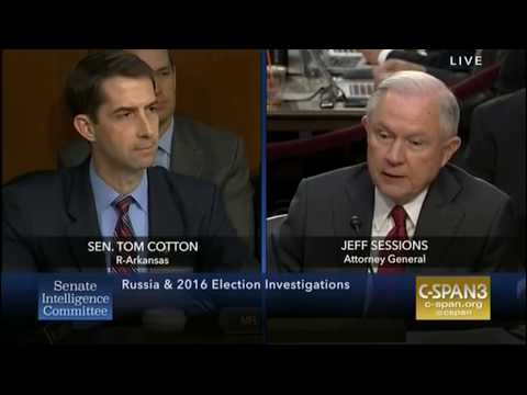 Tom Cotton destroys case for collusion during questioning of Sessions
