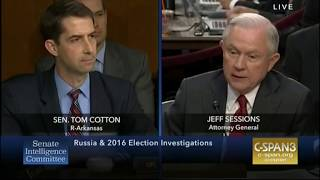 Tom Cotton destroys case for collusion during questioning of Sessions Free HD Video