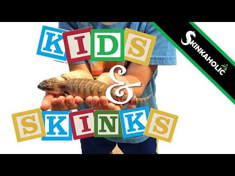 Parent Guide | Do Blue Tongue Skinks Make Good Pets For Kids? - Ep. 75