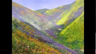 Valley of flowers National Park uttarakhand, India