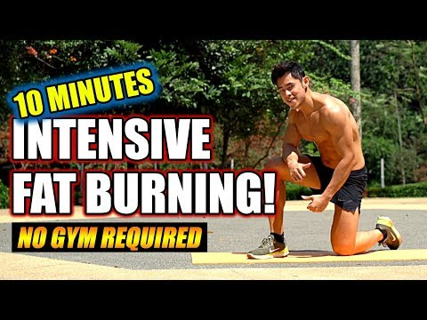 [Level 3.5] 10 Minute Intensive Fat Burning (easy, normal, hard)