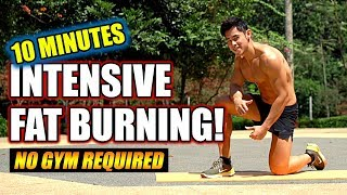 (Level 4) 10 Minute Intensive Fat Burning (easy, normal, hard)