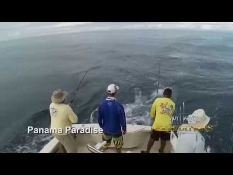Panama Paradise: A Guy Harvey Expedition - Fishing with Guy