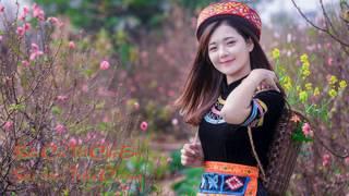 Bài Ca Tết Cho Em - Cover Sáo Trần Cường