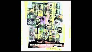 "Terraplane Sun ""Ya Never Know"""