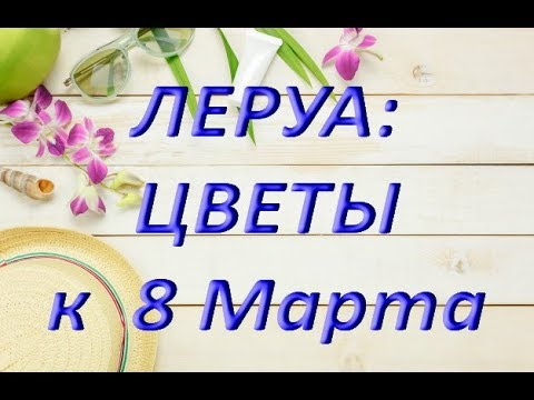 "ЛЕРУА: ЦВЕТЫ к 8 МАРТА,05.03.2019,ТЦ ""Космопорт"",Самара."