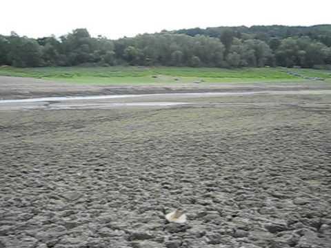Edersee Ohne Wasser