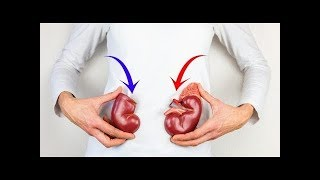 If Your Kidney Is In Danger, The Body Will Give You These 8 Signs | Best Health