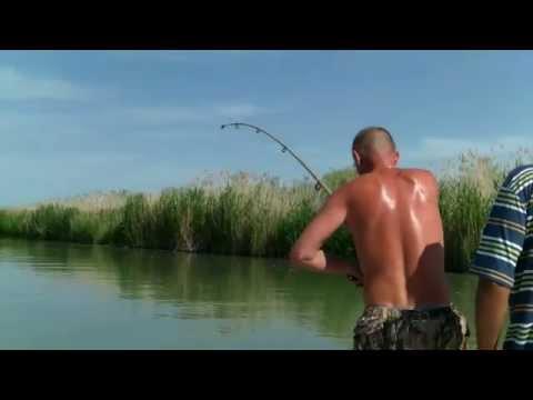 Рыбалка в Казахстане на сома, озеро Балхаш
