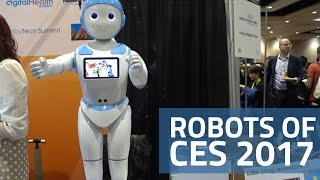 Robots of CES 2017 | LG Hub Robot, AvatarMind iPal, and More