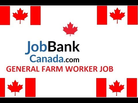 GENERAL FARM WORKER JOB AT CANADA//APPLY NOW//2018-2019//GEN